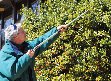Recap: Pruning Workshop at Davis Library with Eric Wenger