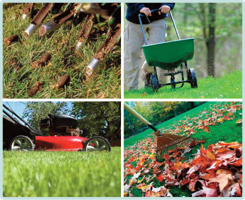 Fall (Late August to Late November) Is The Most Important Time Of Year For Your Lawn