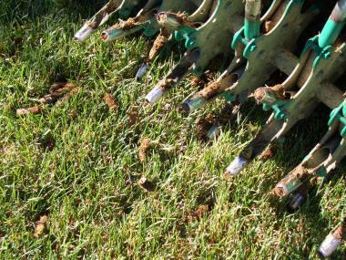 restore your lawn- fertilizer
